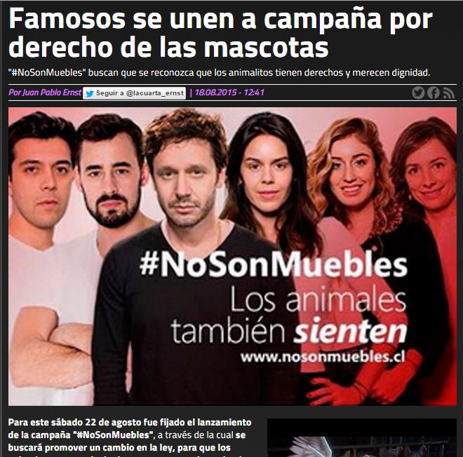 Prensa – #NoSonMuebles | www.nosonmuebles.cl | Fundación ...